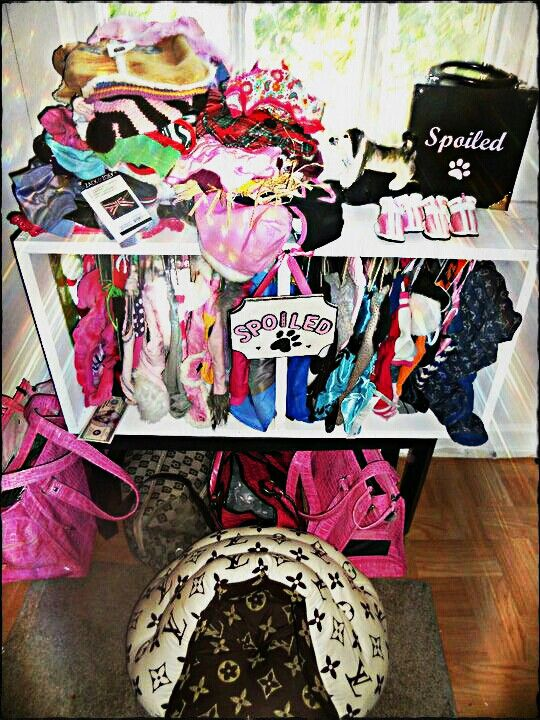 Old shelf made into a dog closet <3 yes my dogs are a tiny bit spoiled!