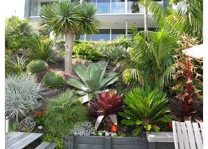 Tropical Garden Ideas Nz 91 best landscaping ideas images on pinterest | landscaping