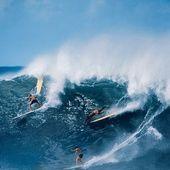 Avec son nouvel ouvrage « Surfing », les éditions Taschen retracent toute l'histoire du surf. Une lame de fond en forme de lifestyle qui combine performance sportive et style pour plus de 20 millions d'adeptes.