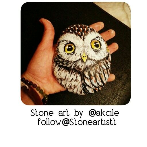 It's my favourite owl ever @stoneartistt @akcile