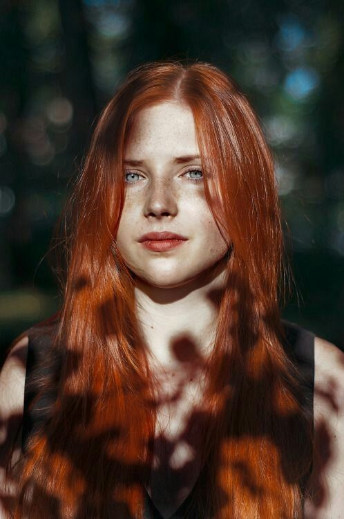 Beautiful ginger with red bush aims to please 2