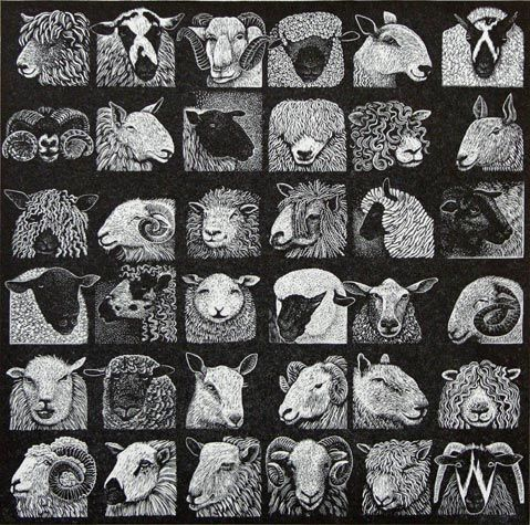 Hilary Paynter. Sheep Show. Wood engraving. 7 x 7 inches. $240