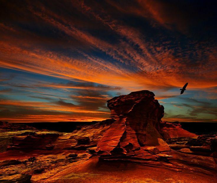 Chile, Atacama par Ghenadie Shatov > http://facebook.com/profile.php?id=100001801443364