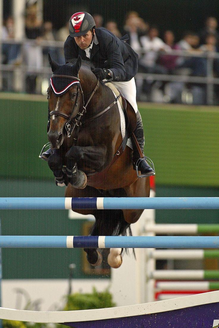 Hickstead - the showjumper who died in front of millions after completing a course of enormous fences!