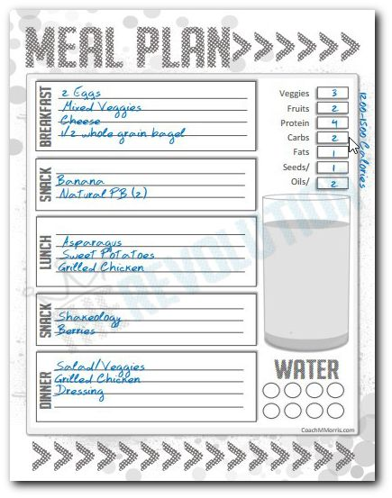 108 best Planners AND Printables images on Pinterest Happy - day to day planner template free