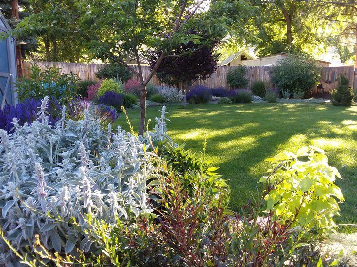 Best 20 low water landscaping ideas on pinterest desert for Low maintenance flower bed ideas