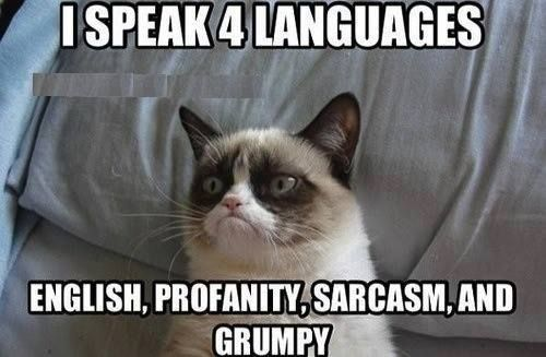Yes, I'm multi-lingual...