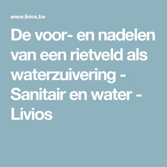 De voor- en nadelen van een rietveld als waterzuivering - Sanitair en water   - Livios