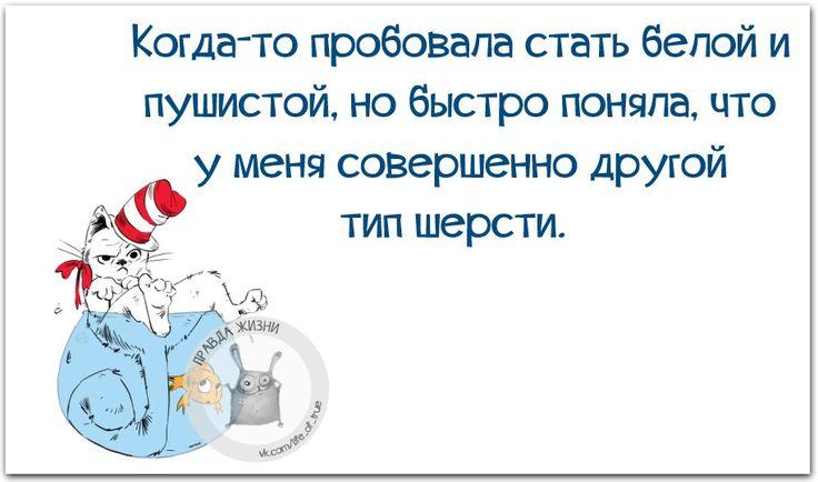 _XuMGj6NTZg.jpg (915×540)