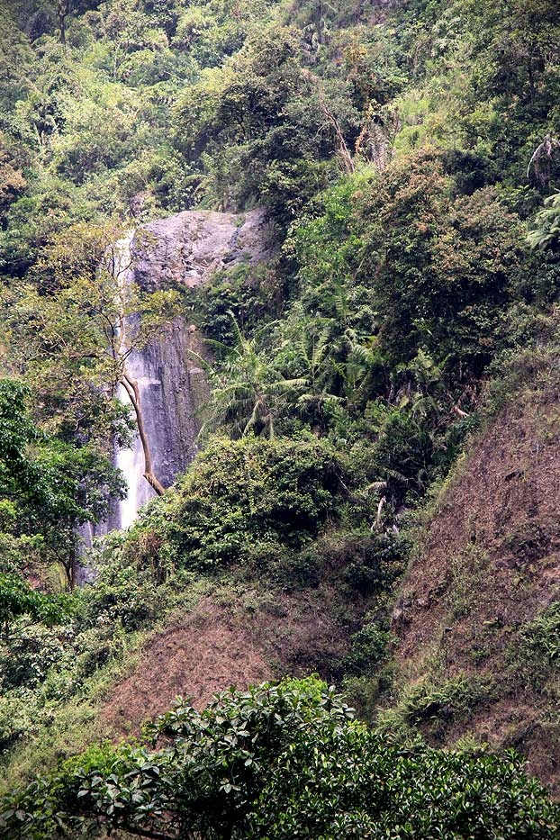 Set amongst beautiful sceneries along the way, visitors must trek about 20 minutes crossing rivers and a rocky path before reaching the site of Madakaripura Waterfall.