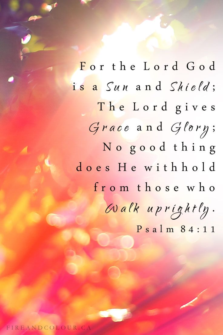 Bible Verse Scripture Psalm 84:11