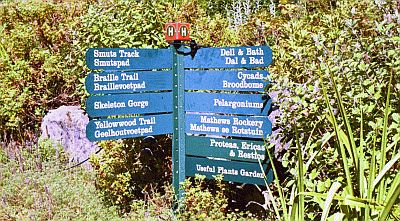 Kirstenbosch Gardens, Cape Town, South Africa