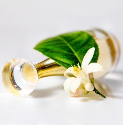 Eigenes Parfum selber mischen: Parfum Rezept für Parfum mit Jasmin Duft