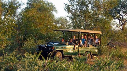 Safaritur i Afrika - Safari vehicle #travel #safari http://travels.kilroy.no/destinasjoner/afrika/safari