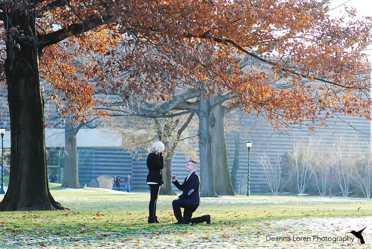 Cute surprise proposal pictures | Down on one knee | Cleveland, Ohio | Deanna Loren Photography