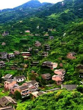 A ghost village in Zhoushan, Zhejiang Province  Calling it a ghost village because there are very few people still living there and vines have claimed the ownership of the houses.