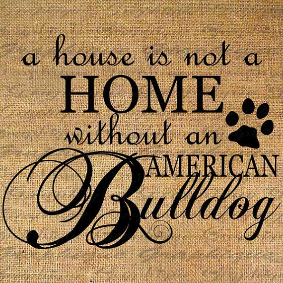 HOME wo American BULLDOG Text Word Calligraphy Digital Image Download Sheet Transfer To illows Totes Tea Towels Burlap No. 5045 on Etsy, $1.00