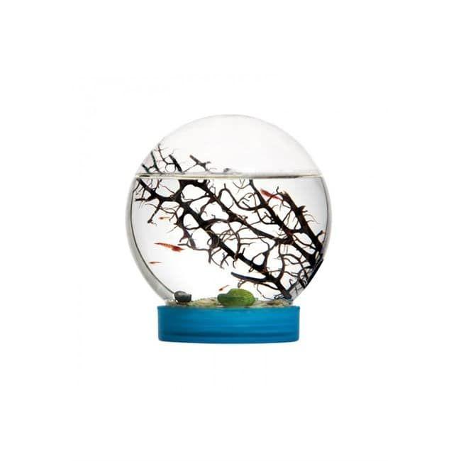 Bioglobe - Nature et découvertes (àpd 45€)