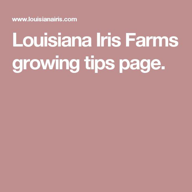 Louisiana Iris Farms growing tips page.