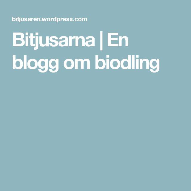 Bitjusarna | En blogg om biodling