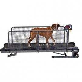 Tapis de marche medium pour chien, rééducation animale -  MIKAN