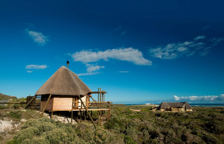 The Agulhas restcamp in Agulhas National Park, South Africa - southernmost tip of Africa