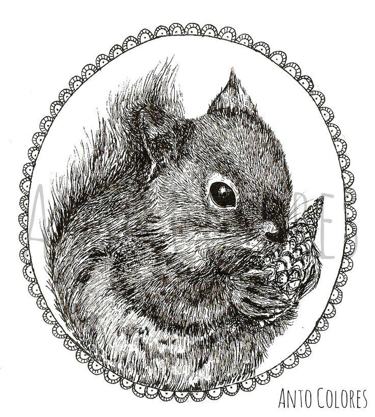 #chipmunk #ardilla #illustration #ilustracion #antocolores  www.instagram.com/anto.colores https://www.facebook.com/AntoColores/?ref=aymt_homepage_panel