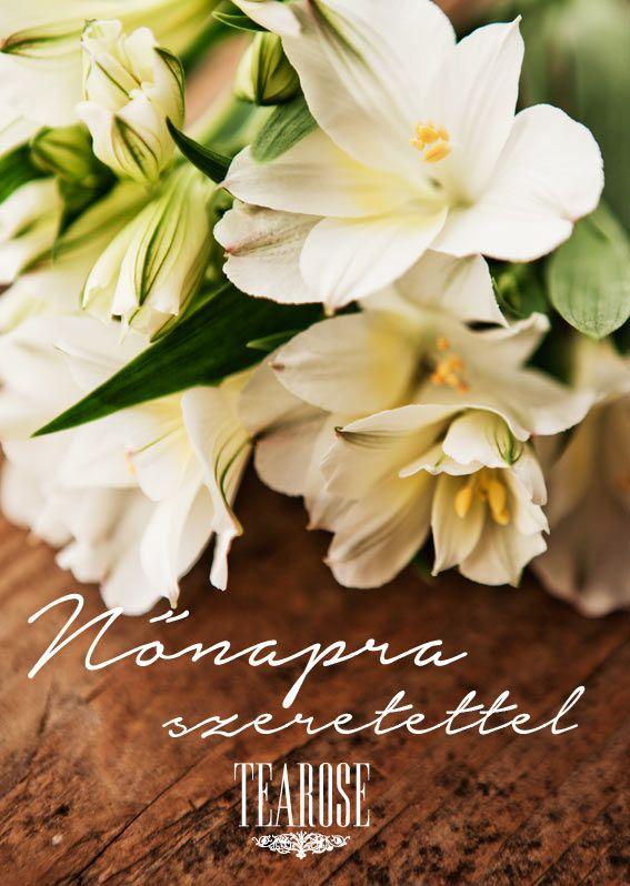 Nőnapi fehér virág | Woman's Day white flower