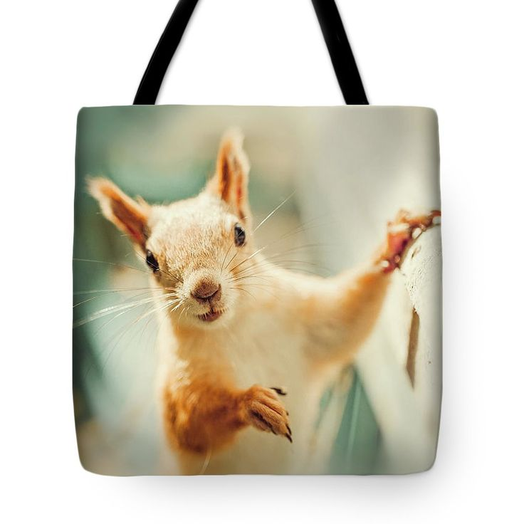 Cute Tote Bag featuring the photograph Cute Squirrel by Oksana Ariskina for children and kids. Cute and funny wild animals! #OksanaAriskina #Squirrel #WildAnimal Available as poster, greeting card, phone case, throw pillow, framed fine art print, metal, acrylic or canvas print with my fine art photography online: www.oksana-ariskina.pixels.com