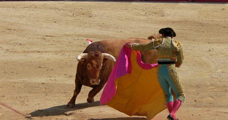 Os touros realmente odeiam a cor vermelha?. Toureiros tradicionalmente usam capas vermelhas. Esta é provavelmente a origem da suposição de que a cor vermelha enraivece os touros. Enquanto o balançar de capas vermelhas dá ao público um show espetacular, é o movimento que atrai a atenção do touro.