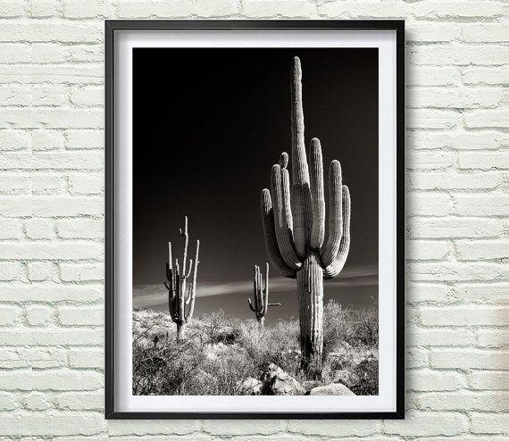 Cactus | ► Fotografie | Postersinhuis.nl