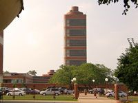 Фрэнк Ллойд Райт (Frank Lloyd Wright): Johnson Wax Headquarters, Racine, Wisconsin (Здание управления компании «S.C Johnson & Son». Расин, Висконсин), 1936—1939