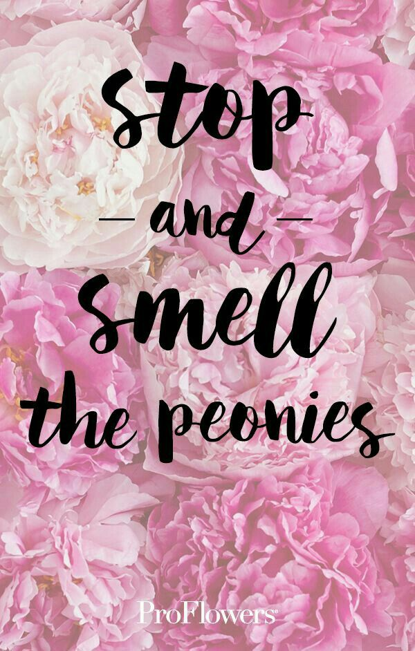 Stop and smell the peonies.