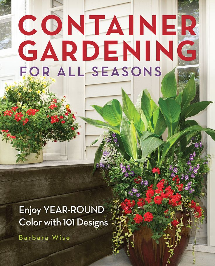 Container Gardening For All Seasons: Enjoy YearRound Color
