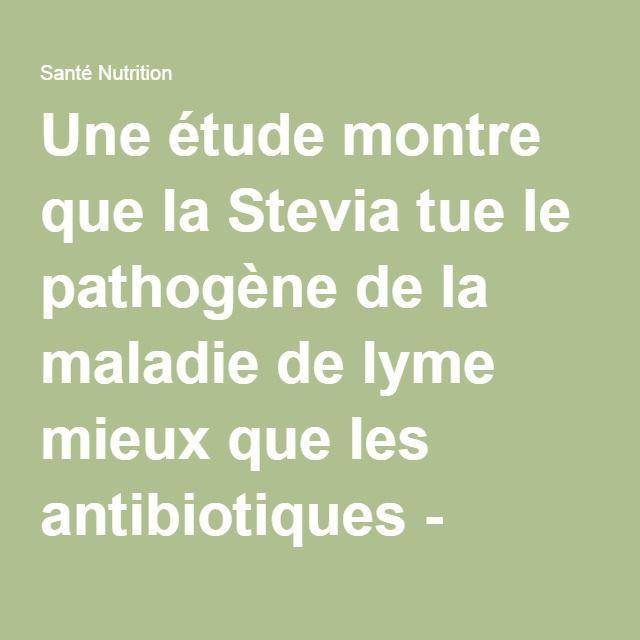 Une étude montre que la Stevia tue le pathogène de la maladie de lyme mieux que les antibiotiques - Santé Nutrition