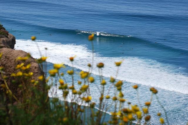 Nudist beach la jolla ca images 74