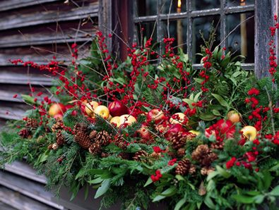 outdoor Christmas planters: Christmas Flower, Decor Ideas, Windowboxes, Windows Boxes, Christmas Windows, Christmas Decor, Flower Boxes, Outdoor Christmas, Window Boxes