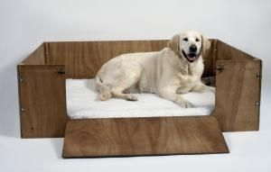 Take Care of Your Pregnant Dog and Get Ready for the Birth: Dog in whelping box