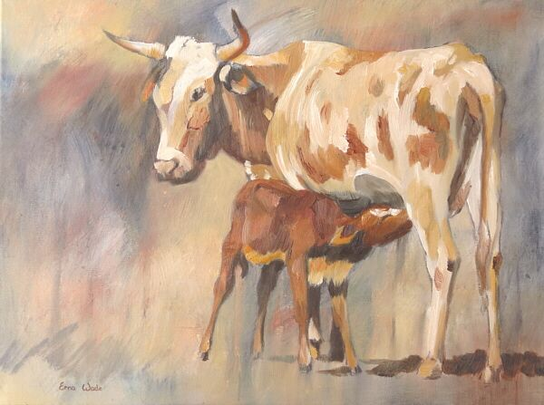 """Nguni Cow and Calf II; Acrylic and Oil on Canvas; 600 x 450mm (24 x 18""""); ZAR 2970 ($260). To buy, contact me on my Facebook page: ErnaWadeArt, or at ewade@absamail.co.za"""