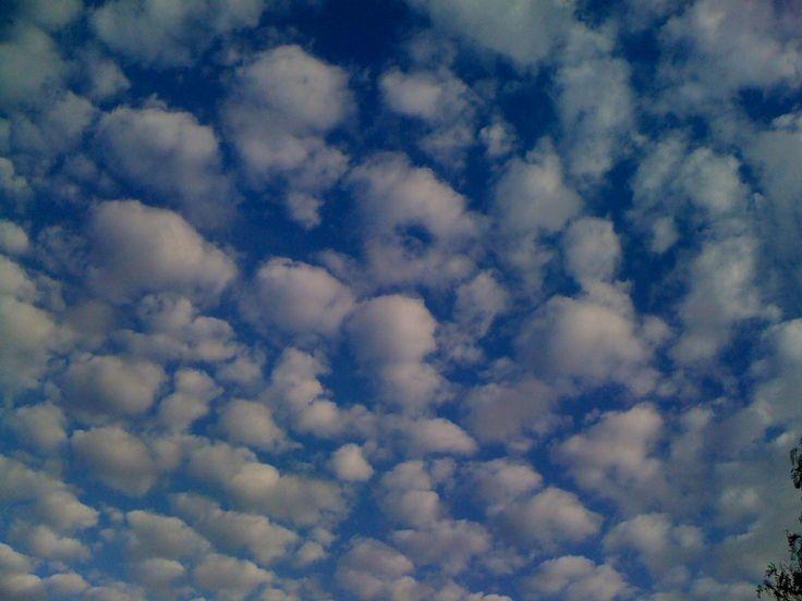 Sky High.