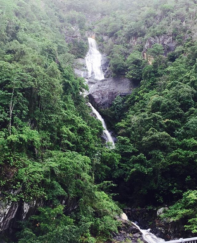 Our beautiful Barron River Gorge. Just love Cairns and the surrounding natural beauty ❤