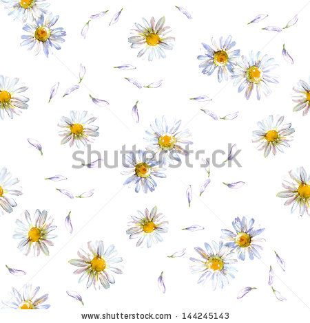 Seamless pattern with watercolor camomile flowers and petals - stock photo