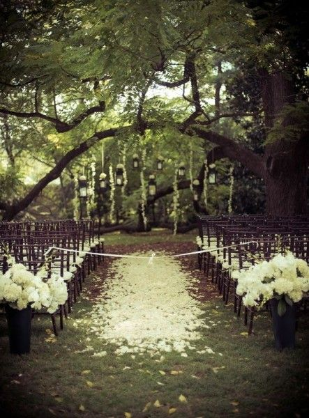 79 best garden wedding decor images on pinterest decor wedding romantic outdoor wedding ceremony photo white rose petals and ribbon junglespirit Gallery