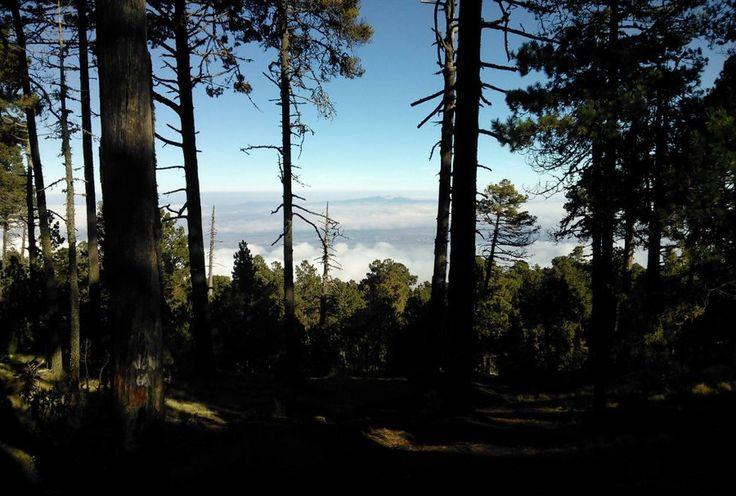 Zona del volcan La Malinche, Tlaxcala, Mexico