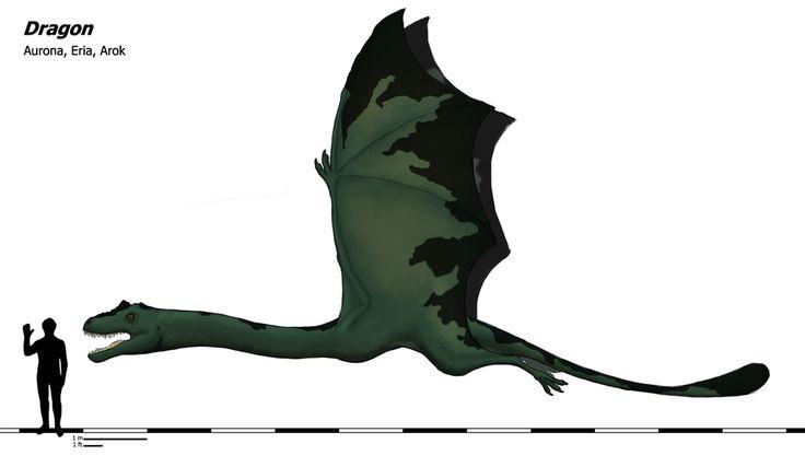 Dragon by dinu1999.deviantart.com on @DeviantArt