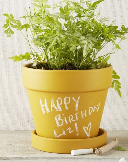 Love this yellow chalkboard planter! http://rstyle.me/n/gpw7znyg6