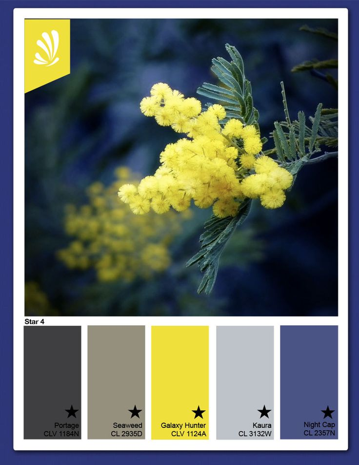 Nature's Palette - Nave blue & Yellow - Pretty colors for the family room. www.generalpaint.com/stylyze