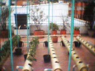 Sistema Hidropónico con tubos de PVC – FAQ | Todo Sobre Cultivo Hidropónico