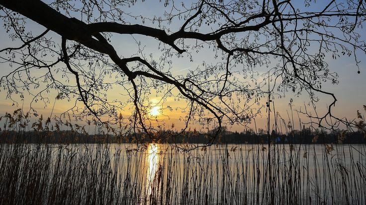 Samstag verbreitet trübe: In der kommenden Woche erwacht der Frühling