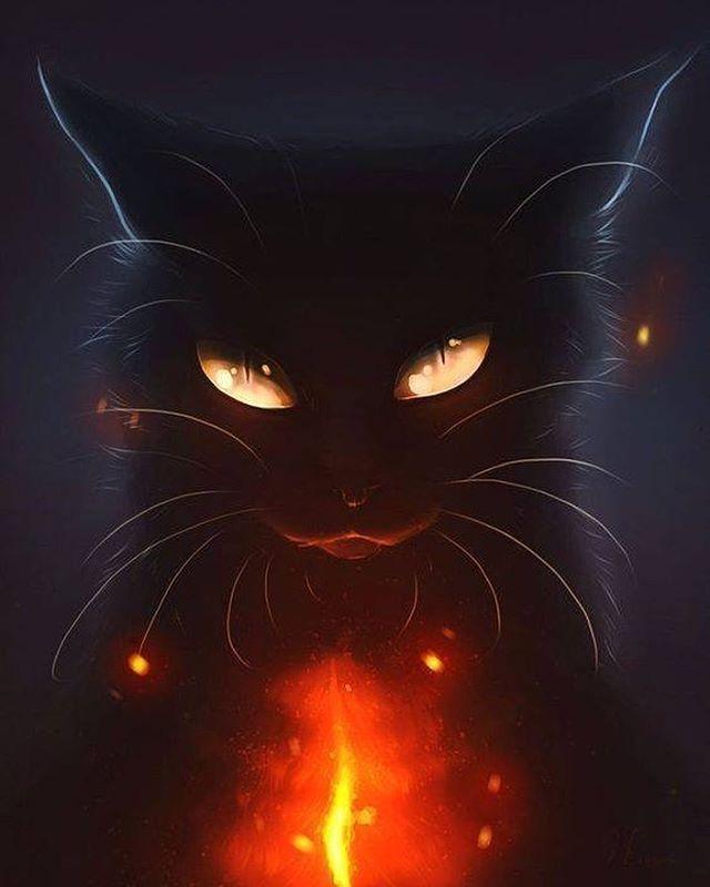 #darkart #blackcat